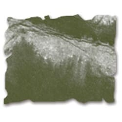 Tim Holtz: Forest Moss - Distress Ink Pad