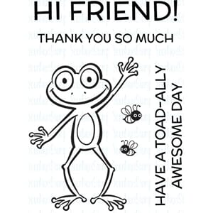 Your Next Stamp: Froggie Friend Clear Stamps, 2x3 inch