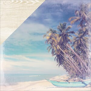 Kaisercraft: Palms - Coastal Escape