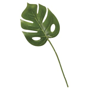 Dekor - Vindusblad/monstera, str 80x215 mm, 3/Pkg