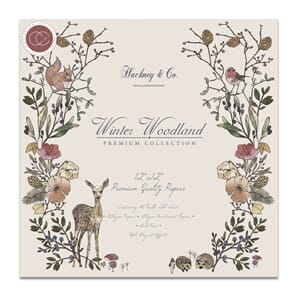 Hackney & Co - Winter Woodland , 12x12, 40/Pkg