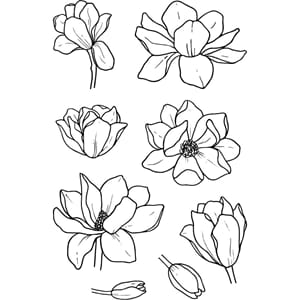 Jane's Doodles: Magnolia Clear Stamps, 4x6